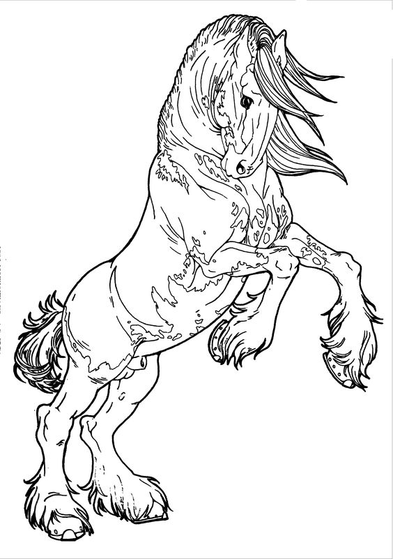 advanced printable horse coloring pages   Patterned Clydesdale by AppleHunter.deviantart.com on ...