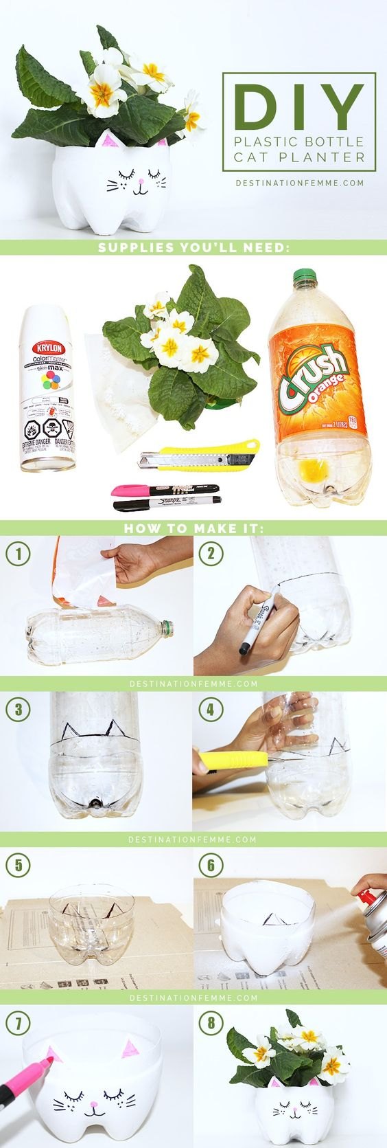DIY Kitty Cat Planter From A Soda Bottle - Imgur