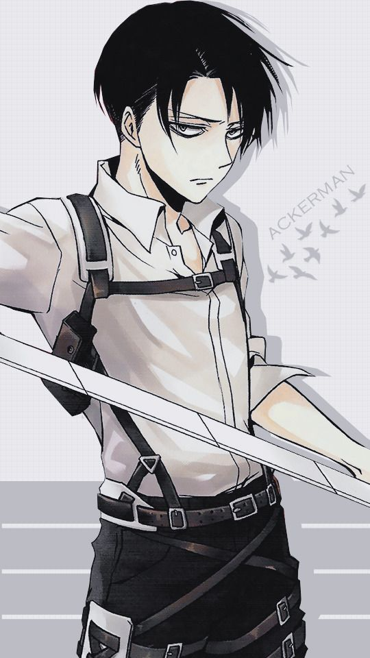 Image Result For Anime Wallpapers Phone Levi Attack On Titan Levi Ackerman Gambar Anime