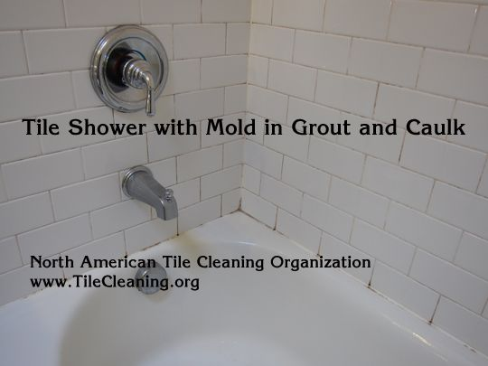 How To Clean And Remove Mold In A Ceramic Tile Shower Cleaning Shower Mold Cleaning Mold Shower Tile