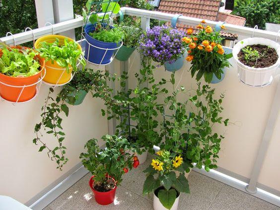 Dikas da Kika: Horta e Jardim vertical - 27 modelos - Inspire-se !!
