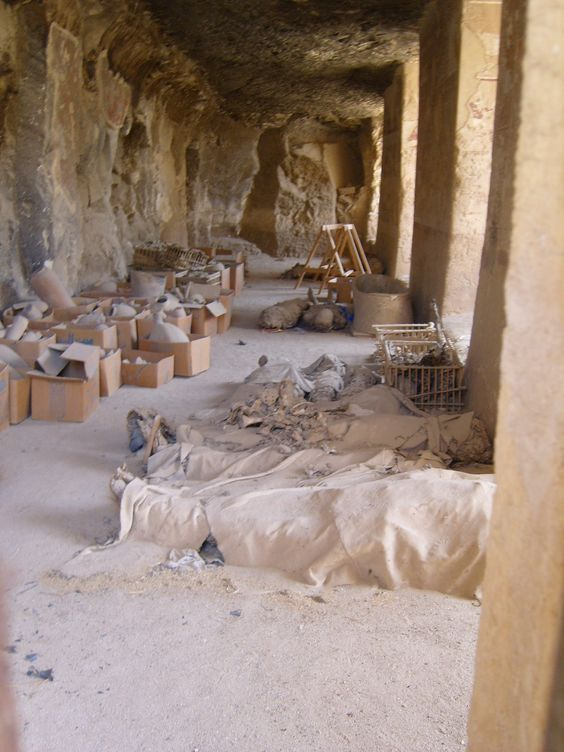 Recent findings from the Tombs of the Nobles - pottery, tools and mummies waiting to be logged and go to the museums