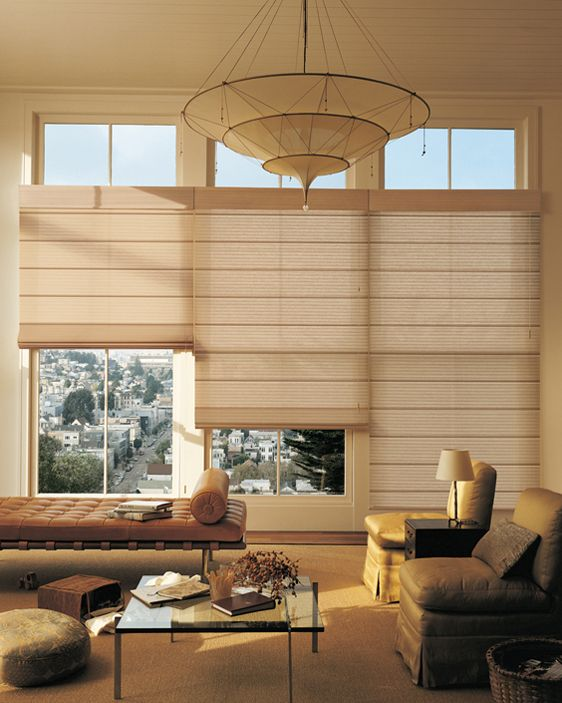 Casual Elegant Living Room: Carpets, Hunter Douglas And Cas On Pinterest