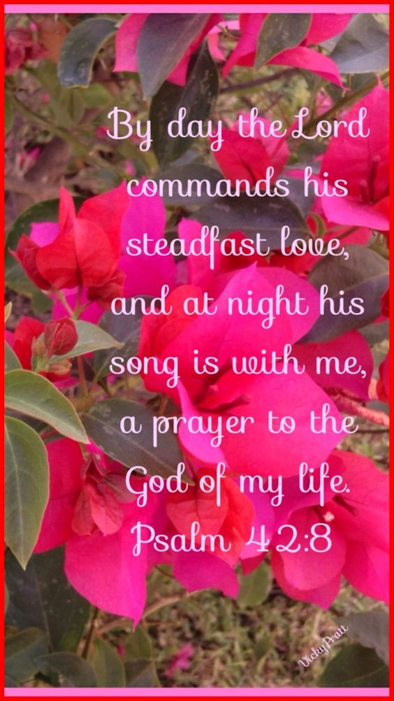 Psalm 42:8 (ESV) 8 By day the Lord commands his steadfast love, and at night his song is with me, a prayer to the God of my life.