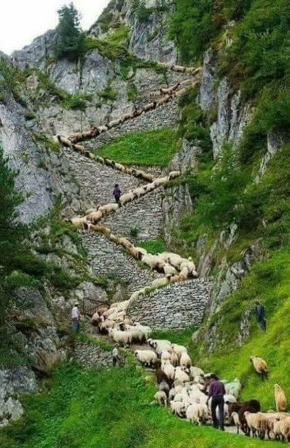 Monasterio de Sumela, Trabzon, Turquía