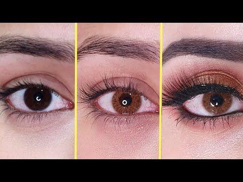 Soft Eye Bella Lenses Urdu Hindi