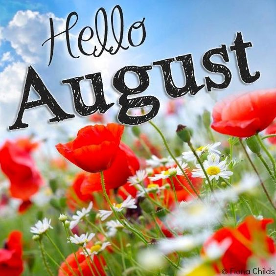 Hello August! via www.Facebook.com/FionaChilds:
