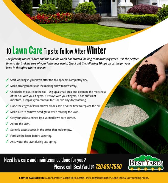 10 Lawn Care Tips to Follow after Winter