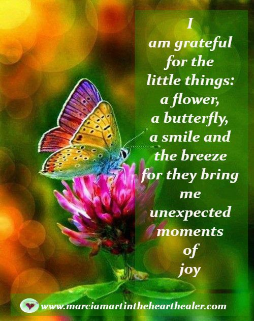 I am grateful for the little things: a flower, a butterfly, a smile and the breeze for they bring me unexpected moments of joy. Gratitude, Joy, Enlightenment, Quotes