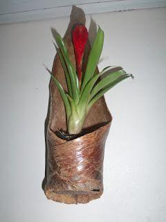 Gilberto Ari Fetzer: Cachepô de folha de palmeiraSabe aquela folha de p...
