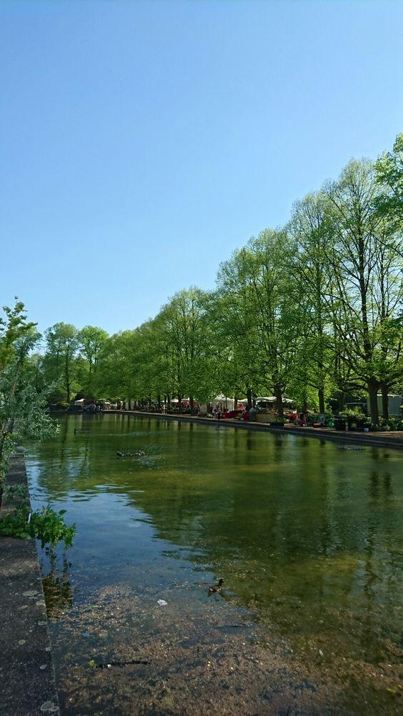 Stadtpark Hannover Blumenschau