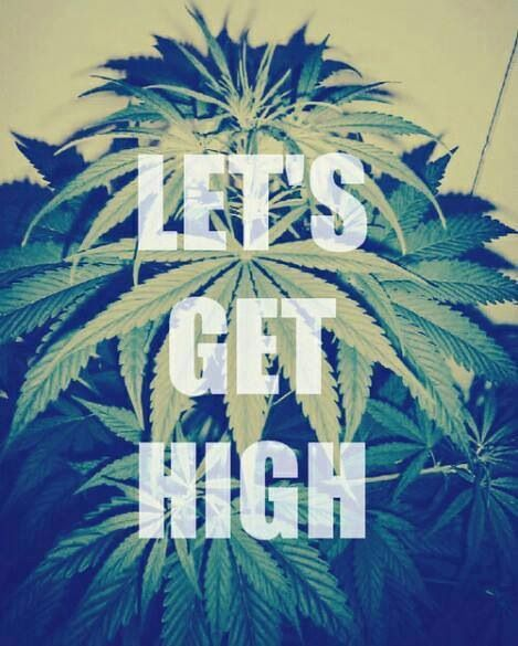 Funny Quotes About Smoking Kush. QuotesGram