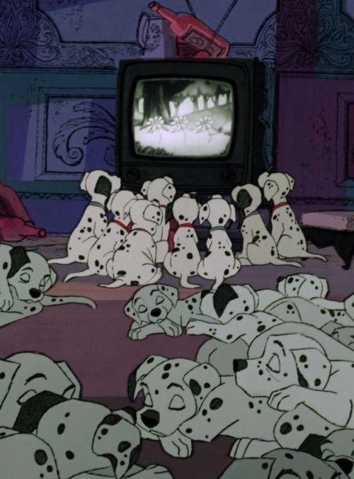 テレビを見る子犬と寝る子犬