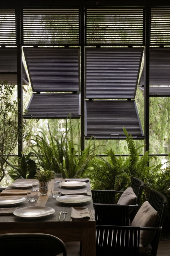 Indoor/outdoor dining. Shutters + ferns.: