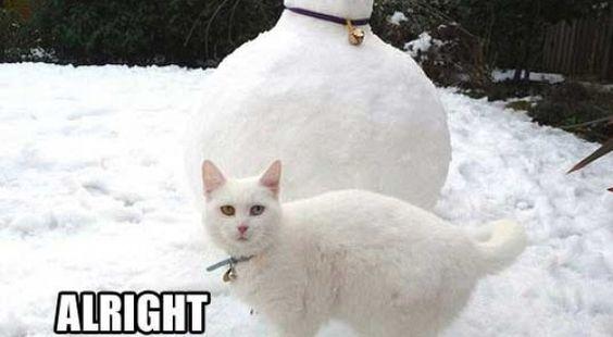 20 bonhommes de neige absolument merveilleux !