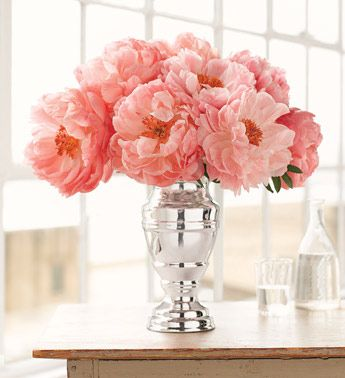 coral peonies add the perfect pop of color to an otherwise neutral space