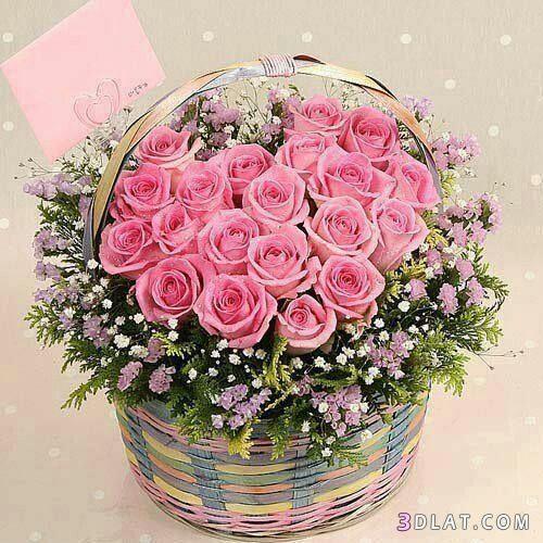 صور باقات ورد رائعه اجمل صور الزهور2019 صور ورود مميزة فازات ورود بالوان را Graduation Crafts Beautiful Flowers Floral Wreath