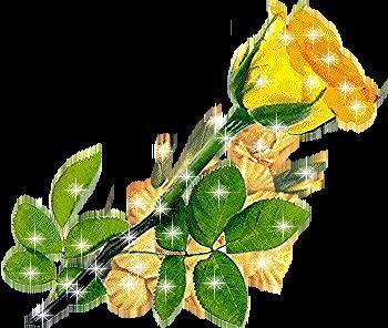صور ورود متحركه صور ورود لامعه بالجليتر متحركه Plant Leaves Plants Leaves