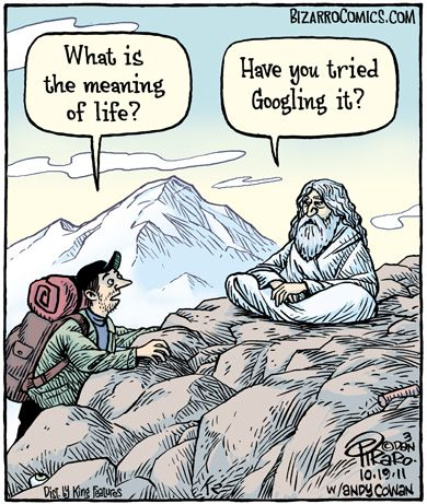 meaning-of-life-cartoon