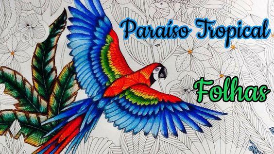 Paraíso Tropical - Colorindo Folhas   Luciana Queiróz
