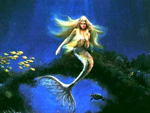 As sereias são seres aquáticos mitológicos antigos que devido algumas espécies tem o corpo de mulher com a calda de peixe, gosta muito de s...