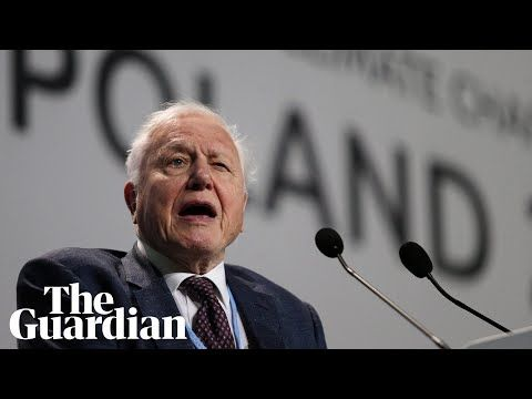The collapse of civilisation and the natural world is on the horizon, Sir David  Attenborough has told the UN climate … | Climate change, Un climate change,  Climates