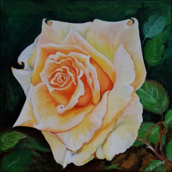 "Aquarell - Acryl-Bild - ""Rose"" auf Leinwand, 20x20 cm - ein Designerstück von Aranka-1 bei DaWanda"
