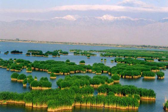 沙湖 [中国] 600ヘクタールの葦が沢山生えている自然形成した湖と300ヘクタールの砂漠が一緒になり素晴らしい景観が広がっている。 モーターボートや、遊覧船に乗って観光することができます★