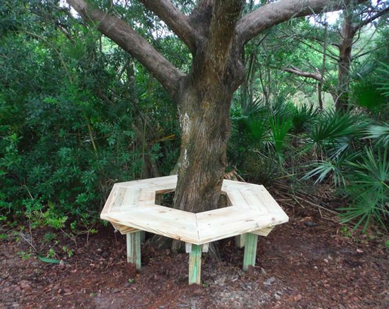 Bench Around A Tree Tree Bench Nautical Patio Furniture Pinterest Trees Benches And Tree