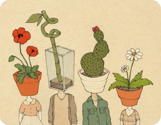 Rose Wong plant illustration