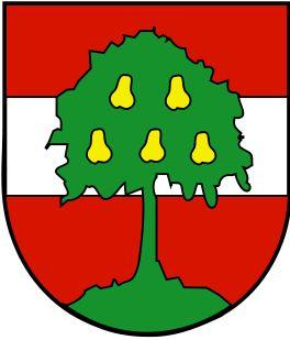 Dornbirn (Vorarlberg) Austria #Dornbirn #Vorarlberg #Austria (L9025)
