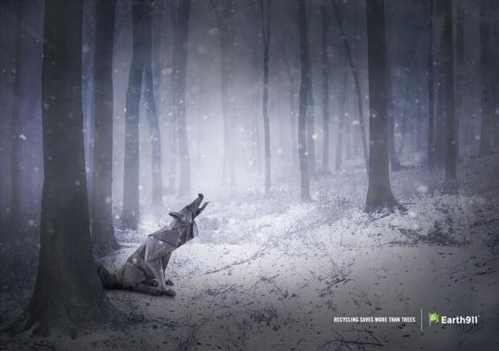 Earth 911: Recycling saves more than trees, Wolf
