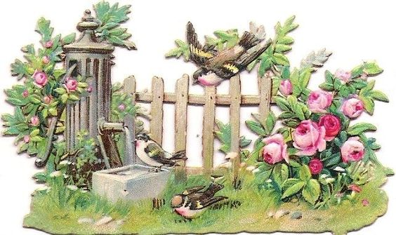Oblaten Glanzbild scrap die cut chromo Vogel bird robin Brunnen Garten Zaun:
