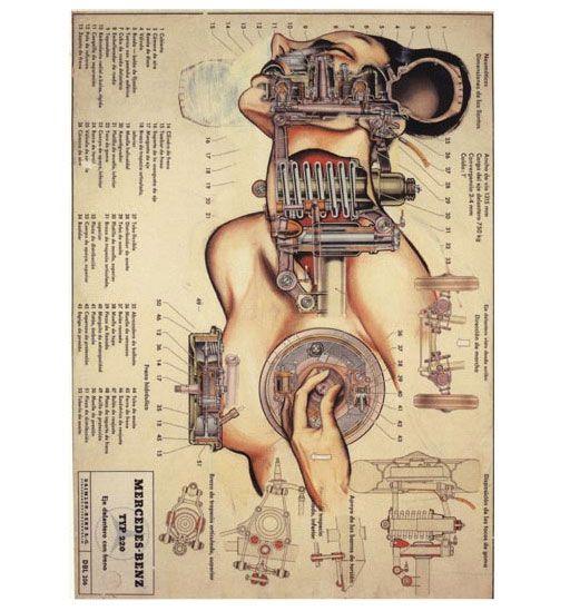 Pintura/Anatomias, Sintonizando  Fernando Vicente, 2000