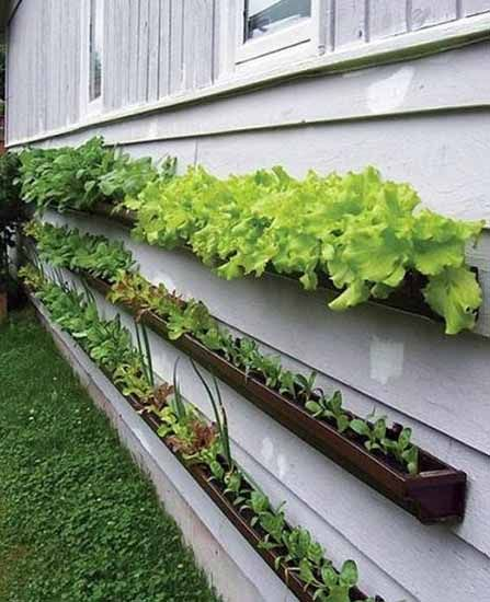 Unusual planters for backyard decoration 20 spring for Yard planter ideas