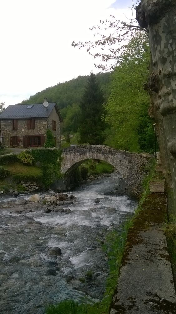 Just cant get enough of this cute little photo, a little mountain stream in the Ariege. The magical pyrenees.