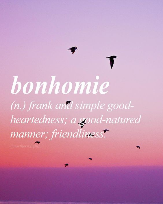 English with French origin \\bon-uh-mee