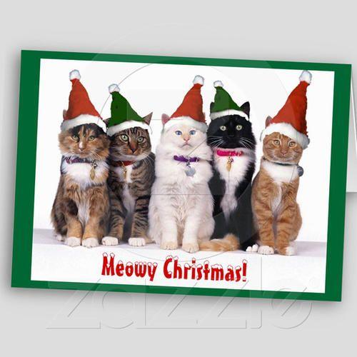 "meowy"" Christmas"