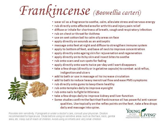 Frankincense has a sweet, warm, balsamic aroma that is stimulating & elevating. It has comforting properties that help focus the mind & overcoming stress and despair. Frankincense is a holy anointing oil in the Middle East, where it has been used in religious ceremonies for thousands of years. More recently, it has been used in European and American hospitals and is the subject of substantial research. It is a valuable ingredient in skin care products for aging and dry skin.