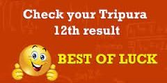 Tripura Higher Secondary Results 2016