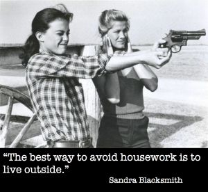 """""""The best way to avoid housework is to live outside.""""  ~ Sandra Blacksmith"""