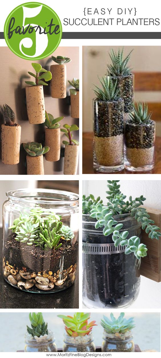 Easy Diy Succulent Planters Creative Planters And Corks