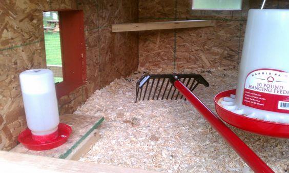 Deep Litter Method for Chickens