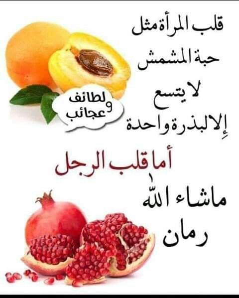 انواع البشملة او المشملة او المشمش الهندي Eriobotrya فوائد النبات فوائد معلومان عامه معلوماتية Apricot Fruit