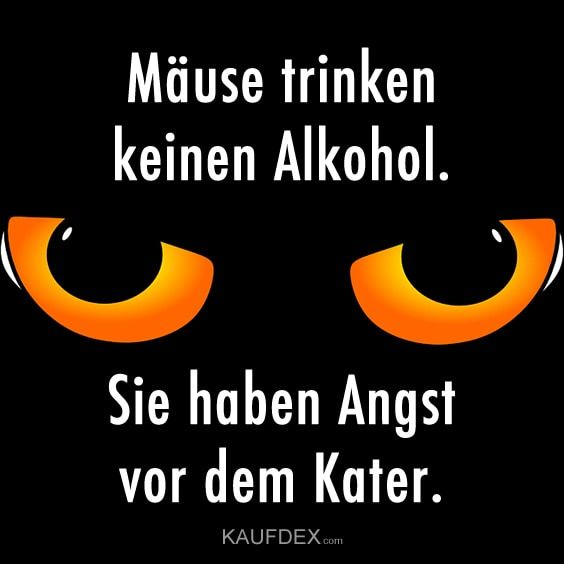 Mause Trinken Keinen Alkohol Kaufdex Lustige Spruche Alkohol Lustig Lustige Spruche Spruch Alkohol
