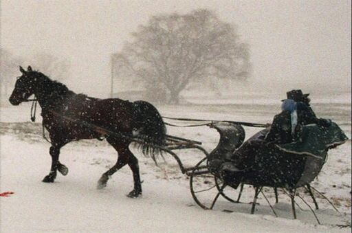 An Amish one-horse open sleigh seen in Intercourse, Pa