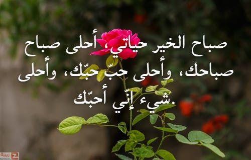 صور صباح الحب والاشتياق صباح الحب والشوق صباح الحب حبيبتي Zina Blog Plants Save