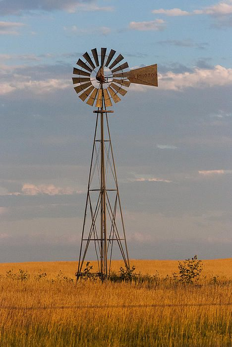 Historic windmill on the shortgrass prairie near Keota in Eastern Colorado