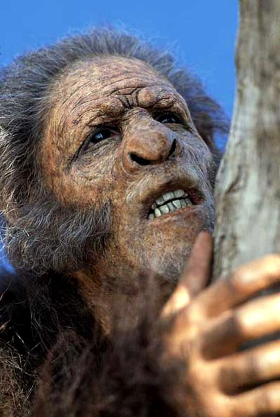 "Homo habilis - documentary ""Walking with cavemen"""