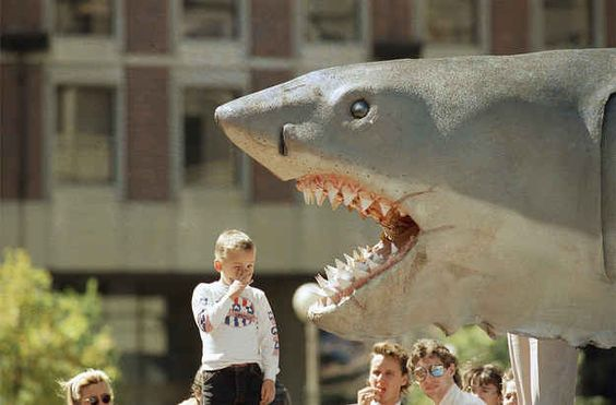 Originally, the movie was supposed to prominently feature a mechanical shark.